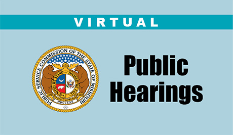 Local Public Hearings